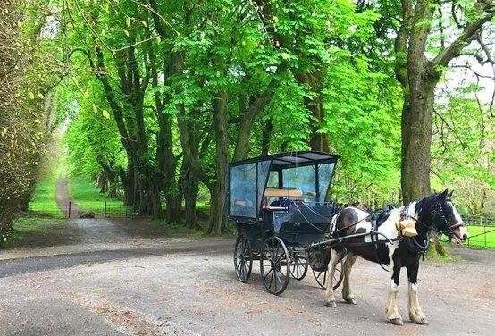 rsz jaunting cart
